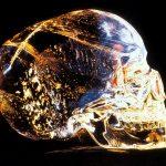 Teschio di cristallo: Secondo la Hewlett-Packard non dovrebbe esistere