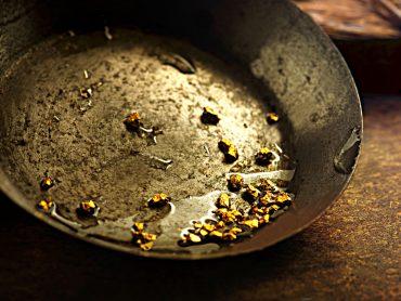 Scoperto un batterio capace di trasformare metalli in oro